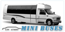 Mini Bus rental in Lxlimo